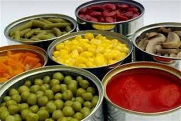 تولید کنندگان غذای آماده|گروه صنایع غذایی نامی نو